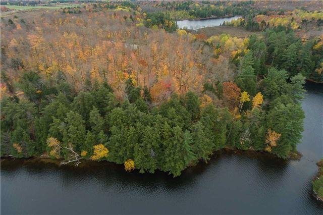 Vacant Land at Lot 1 Lake Ridge Rd, Seguin, Ontario. Image 18
