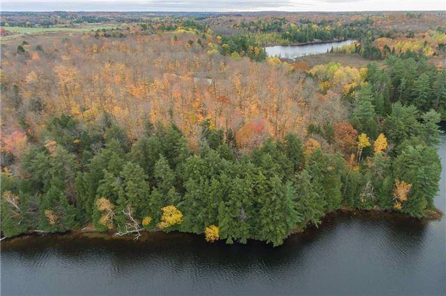 Vacant Land at Lot 1 Lake Ridge Rd, Seguin, Ontario. Image 19