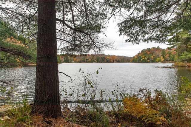 Vacant Land at Lot 1 Lake Ridge Rd, Seguin, Ontario. Image 2