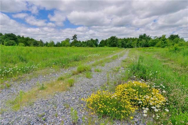 Vacant Land at Lot 1 Lake Ridge Rd, Seguin, Ontario. Image 4
