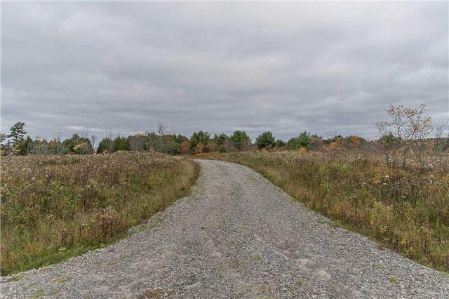 Vacant Land at Lot 1 Lake Ridge Rd, Seguin, Ontario. Image 11