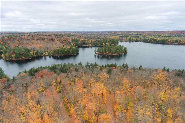 Vacant Land at Lot 1 Lake Ridge Rd, Seguin, Ontario. Image 13