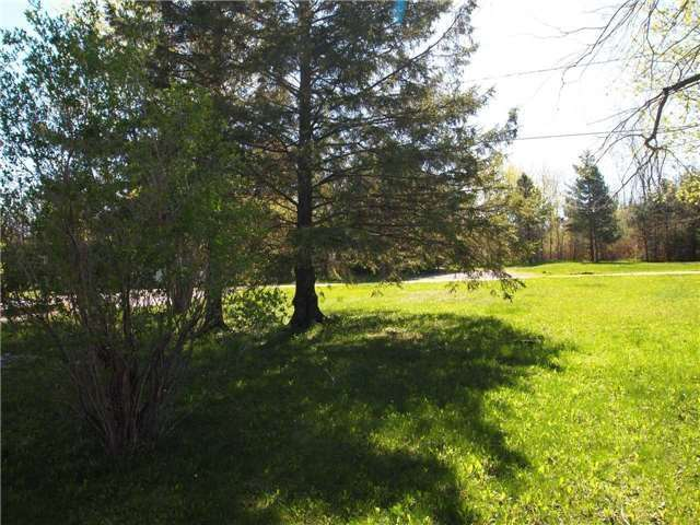 Detached at 45 Redcap Beach Lane, Kawartha Lakes, Ontario. Image 6