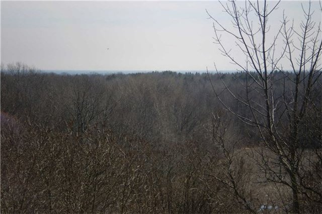 Vacant Land at Lot 1 Barnum House Rd, Alnwick/Haldimand, Ontario. Image 1