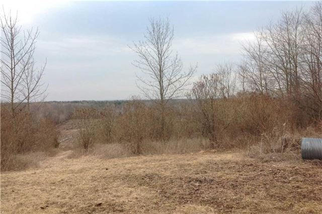 Vacant Land at Lot 1 Barnum House Rd, Alnwick/Haldimand, Ontario. Image 2