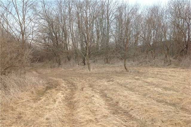 Vacant Land at Lot 1 Barnum House Rd, Alnwick/Haldimand, Ontario. Image 6