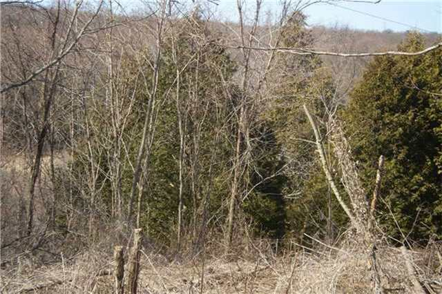 Vacant Land at 254 Barnum House Rd, Alnwick/Haldimand, Ontario. Image 1