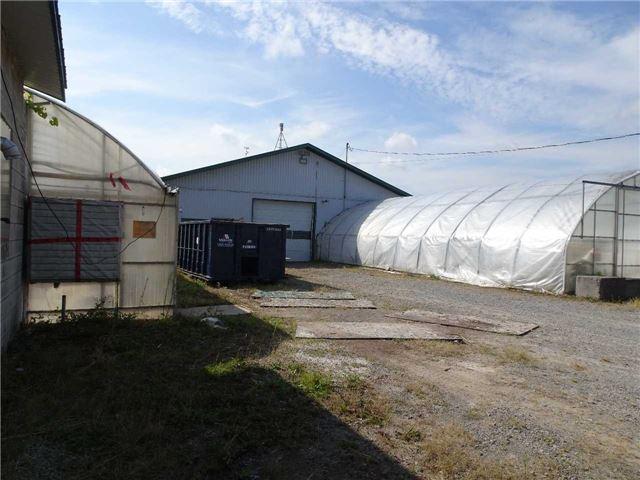 Farm at 1269- 1273 Larkin Lane, Niagara-on-the-Lake, Ontario. Image 2