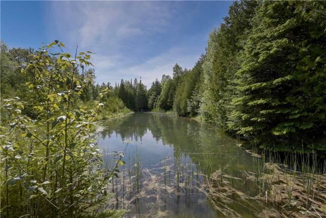 Detached at 355344 Blue Mtns-Euphrasia  Line, Grey Highlands, Ontario. Image 13