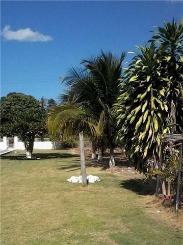 Detached at 10 Longwood Rd, Jamaica, N/A. Image 14