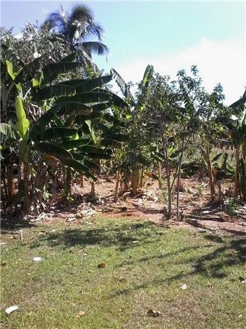 Detached at 10 Longwood Rd, Jamaica, N/A. Image 16