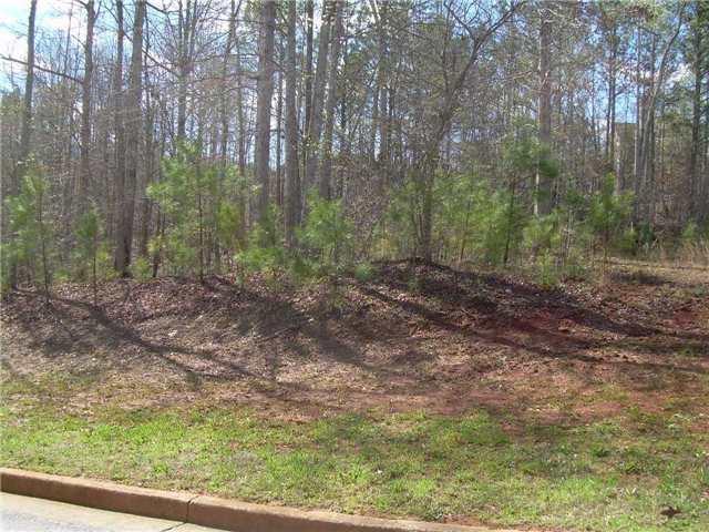 Vacant Land at Lot 10 Santa Cruz Crt, Dallas,Georgia, Ontario. Image 3