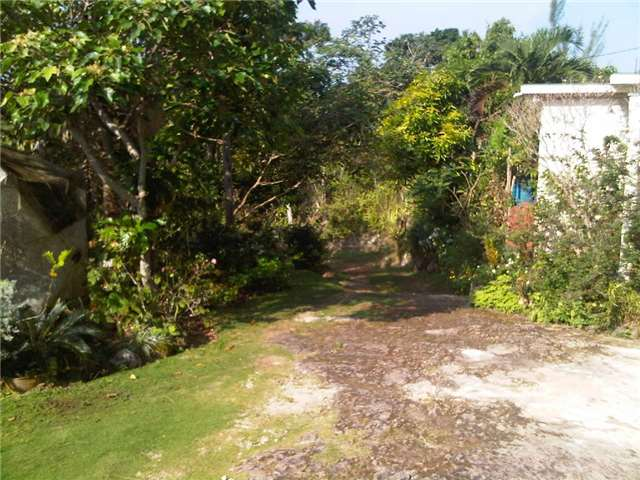 Other at Lot 2&4 Top Hill Rd, Jamaica, Saint Ann. Image 10