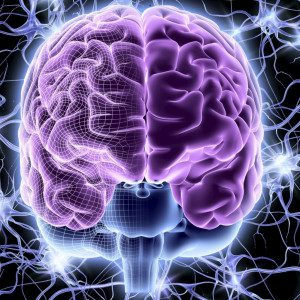 Transforming Practices From Pain To Brain