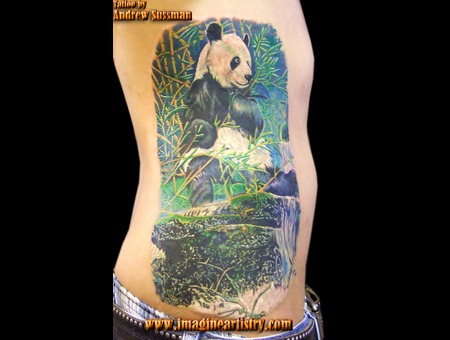 Panda  Nature Color