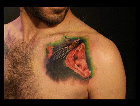 Color Tasmania Istanbul Tattoo Dövme Budakan Color