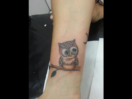Owl  Arm  Color Color