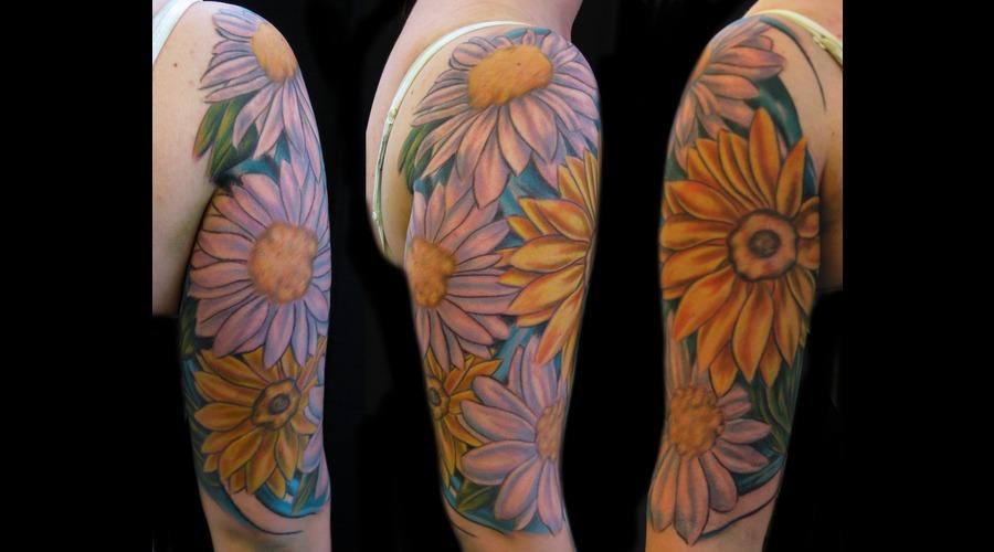 Sunflower  Daisy Color