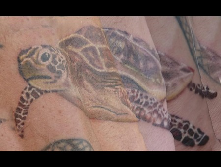 Turtle  Sea  Wrist  Color  Tattoo Color