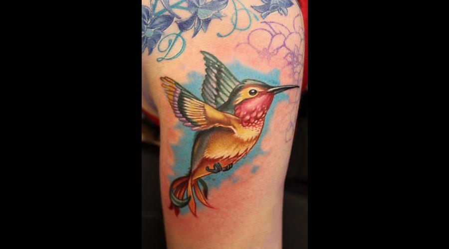 Humming Bird  Color