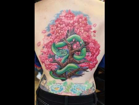Green Mamba  Snake   Cherry Blossom Tree Color