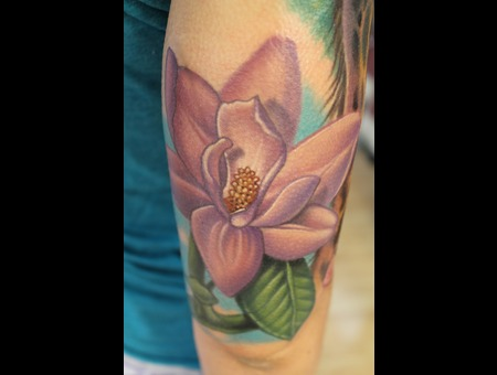 Magnolia Flower Color