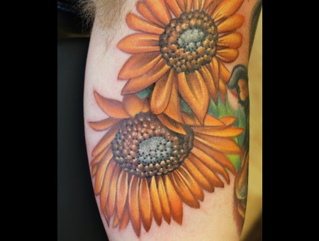 Sun Flowers Color