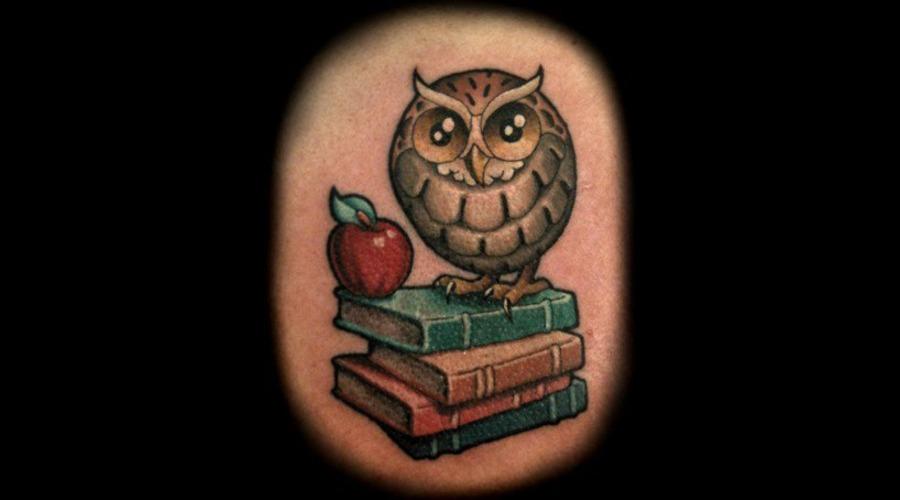 Owl  Color  Books Color