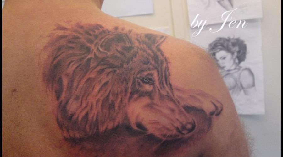 Wolf  Back Black Grey