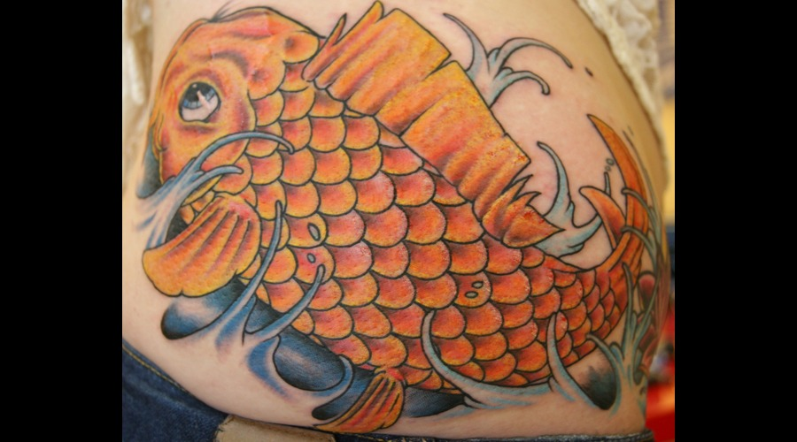 Koi Fish  Freehand  Color