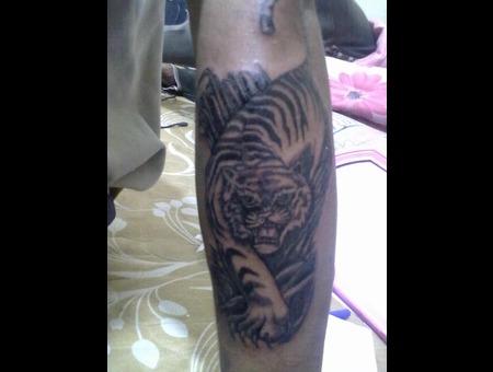 Tiger In Grass Black White
