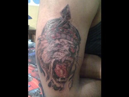 Lion King Tattoo Color