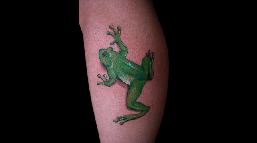 Frog Color Lower Leg