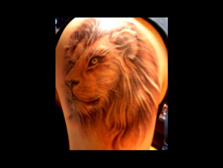 Lion Grey  Color Arm