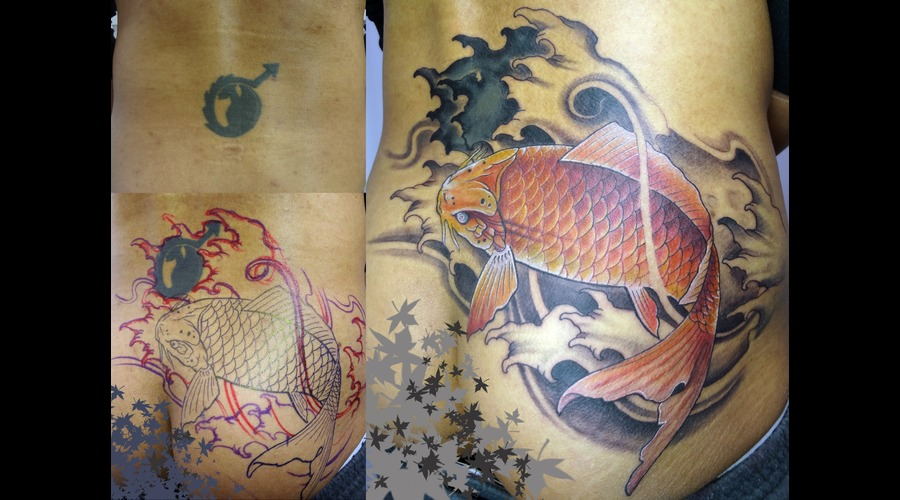 Cover Up  Koi Fish True Artist