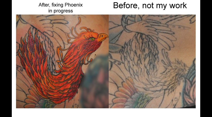 Cover Up  Rework Of Someone Else Work  Phoenix  Bird  Color Color