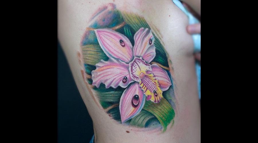 Flower  Orchid  Color Color