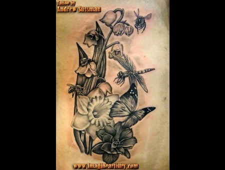 Flowers  Insects  Bugs  Dragonfly  Butterfly Black Grey