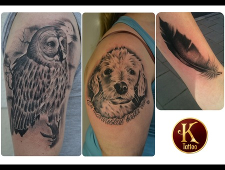 Owl Dog Feather Realism  Black White