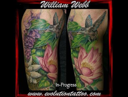 Flowers Humming Bird  Bird  William Webb  Lotus Color