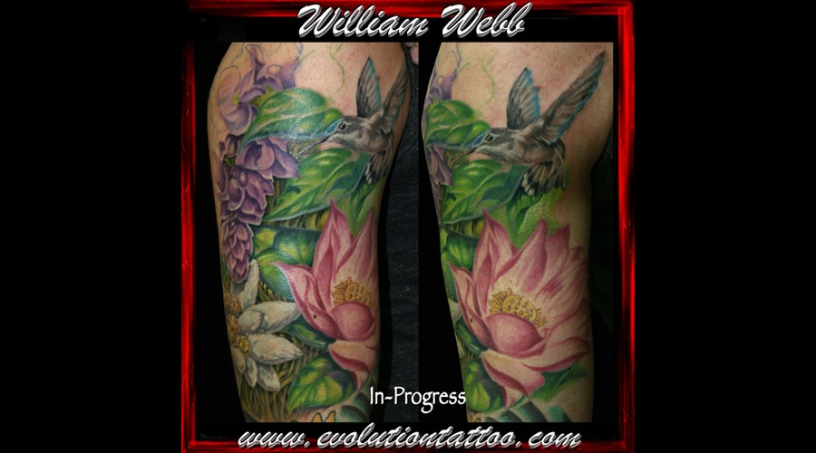 Flowers Humming Bird  Bird  William Webb  Lotus Color