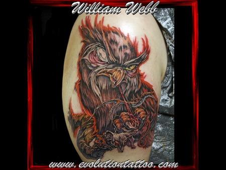 Owl William Webb Bird Color
