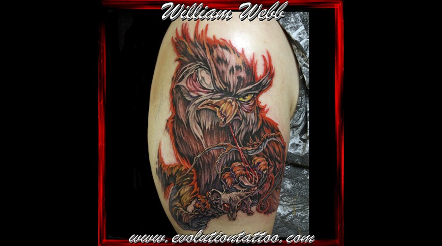 Owl William Webb Bird Color