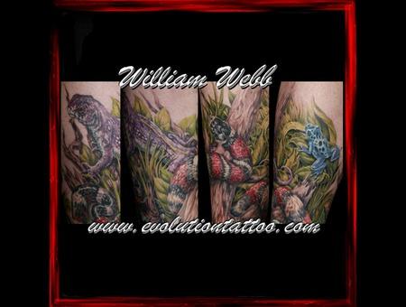 Nature Snake Wildlife Frog William Wenn Color