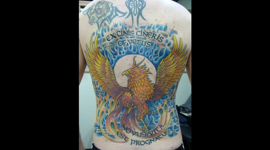 Phoenix  Back Mural  Color Color