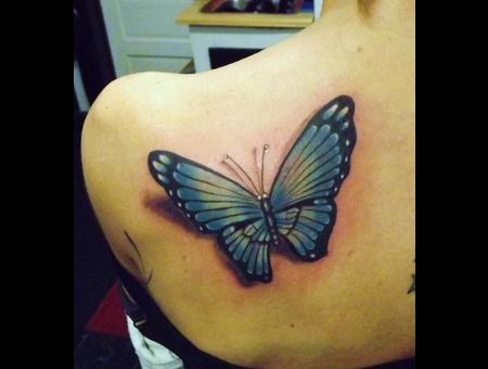 Realistic Butterfly Color