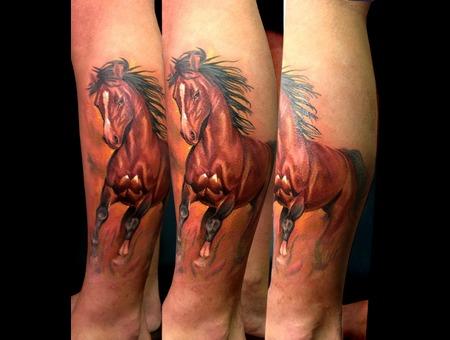 Horse  Fahrettin Demir  Color