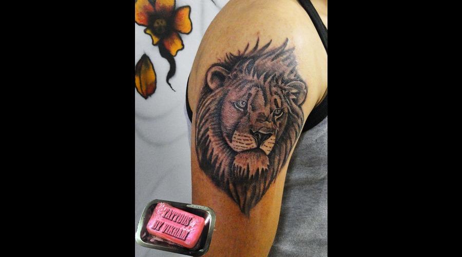 Leo Lion Wildlife Portrait Vikram Black White