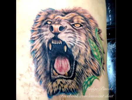 Lion Color