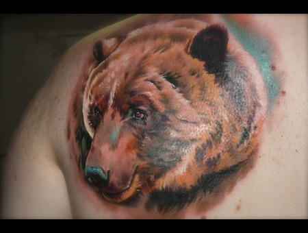Bear  Animals  Colours  Realism Color
